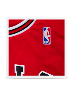 Camiseta Chicago Bulls Replica Rose