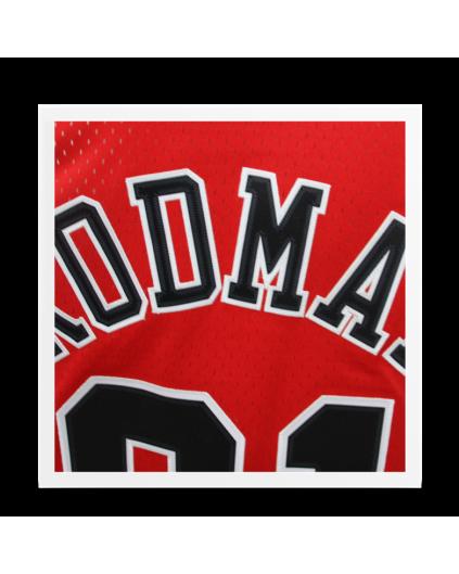 Swingman Rodman