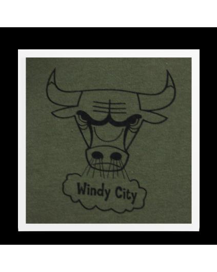 Camiseta Rock Chicago Bulls Verde