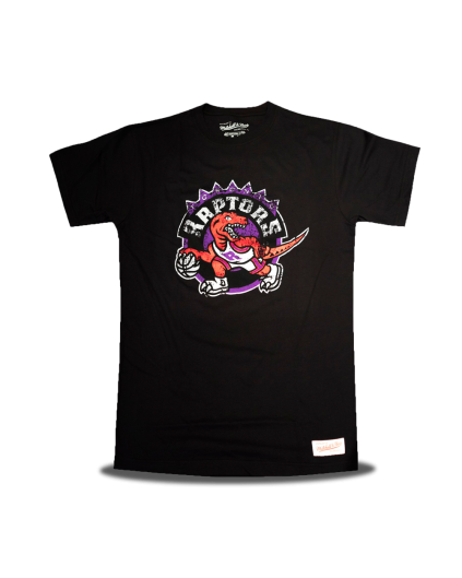 Toronto Raptors Distressed Logo