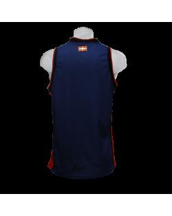 Camiseta Euroliga Baskonia 1ª