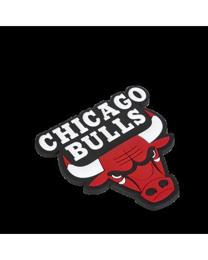 Fridge Magnet Chicago Bulls