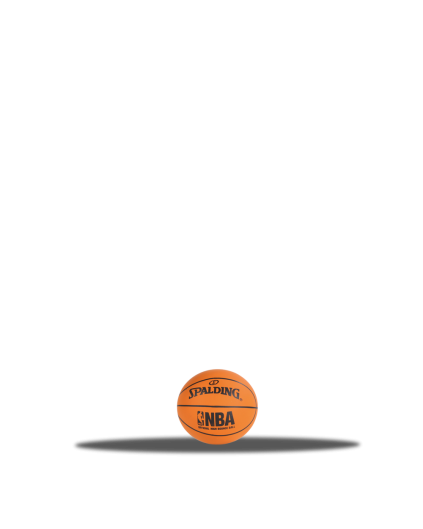 Spaldeen NBA