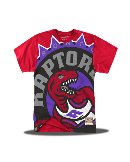 Big Face Toronto Raptors Tee