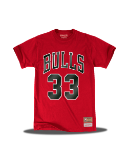 Chicago Bulls The Last Dance 33