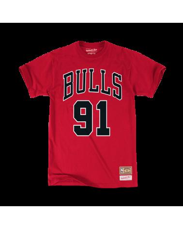 The Last Dance Chicago Bulls Rodman
