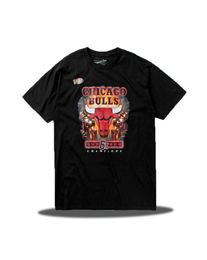 Camiseta Chicago Bulls 6X Champs