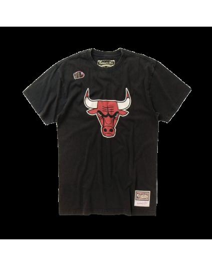 Chicago Bulls Worn Logo Tee